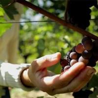 Photo : Ministère de l'Agriculture