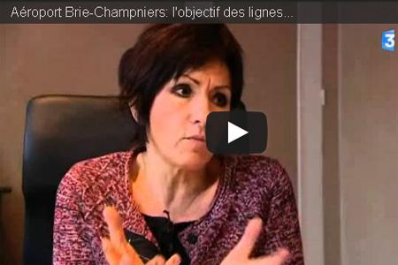 Vidéo sur l'aéroport Brie-Champniers avec Nicole Bonnefoy, présidente du syndicat mixte des aéroports de Charente. Photo : France 3