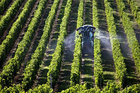 Traitement phytosanitaire d'un vignoble en Gironde. Photo : Philippe Roy / Epicureans